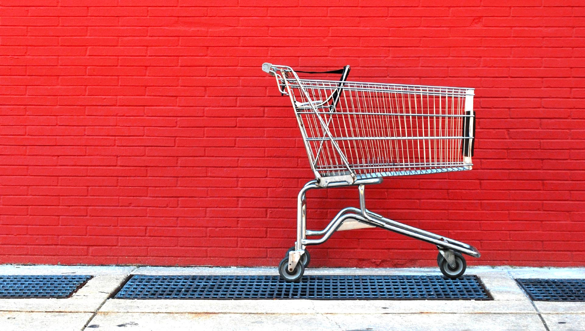 A person pushing a shopping cart